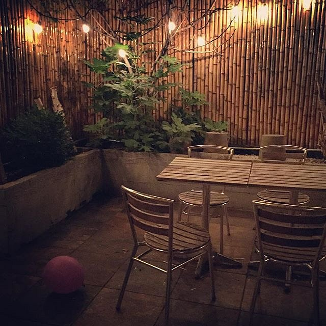 Lost balloon. #brooklyn #newyork #usa #balloon #backyard #sushi #night