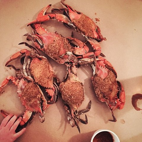 #weekend #family #dinner #baltimore  #maryland #usa #crab #happiness #messiness #nattyboh