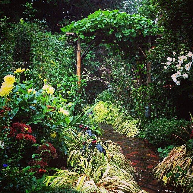 Nina's Garden.