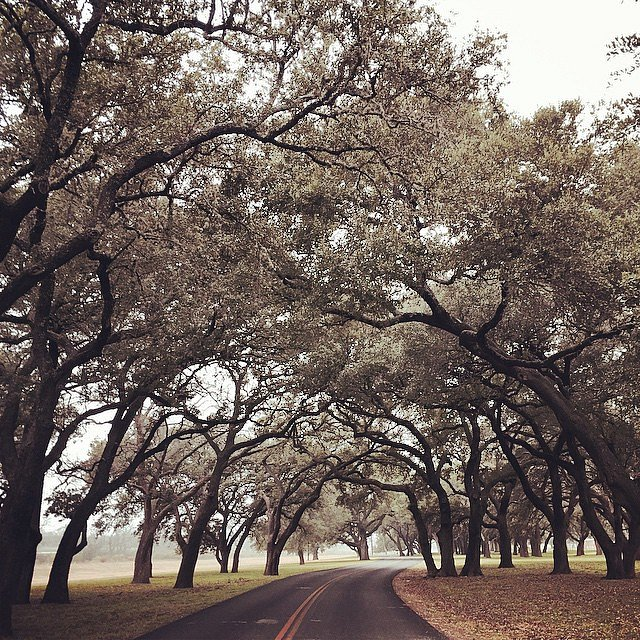 #texas #usa #family #36hours #hillcountry #LBJ