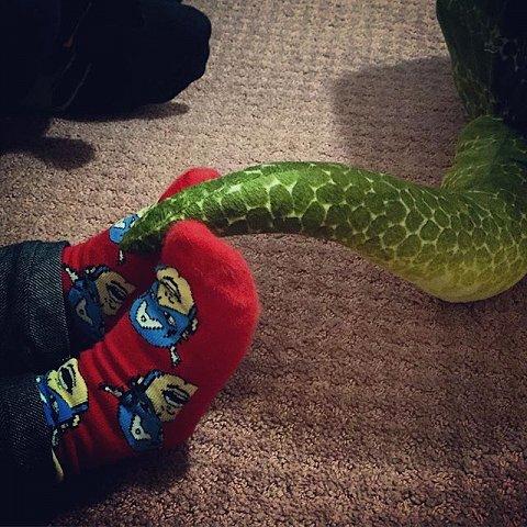 #halloween #errol #party #dinosaur #brooklyn #newyork #usa #tail