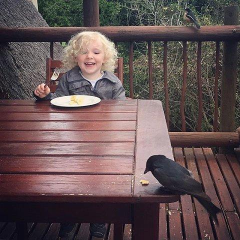 #bird #breakfast #errol #family #peace #southafrica #africa #addo