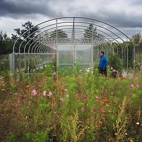 A community garden on the Red Lake Reservation in northern Minnesota. Home to the Red Lake Band of Chippewa, the reservation is the only closed reservation in Minnesota, which means all land is held in common by the tribe and there is no private property. #redake #minnesota #greenhouse #garden #reservation #sovereign