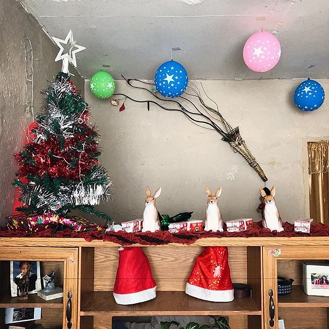 Christmas, Pietersen home. #lovefrommanenberg #manenberg #southafrica #africa #christmasdecorations #forcedgeographies