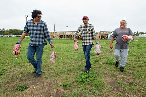 Twenty-one-year-old Brennen Ferguson, left, carries recently plucked and cleaned geese with his younger brother, Seth Ferguson, center, and their father, Earl Fish, 60. The family, who is from Tuscarora Nation and Onondaga Nation, traveled from New York to particapte in the second annual Red Lake Food Summit. <br>September 2017.