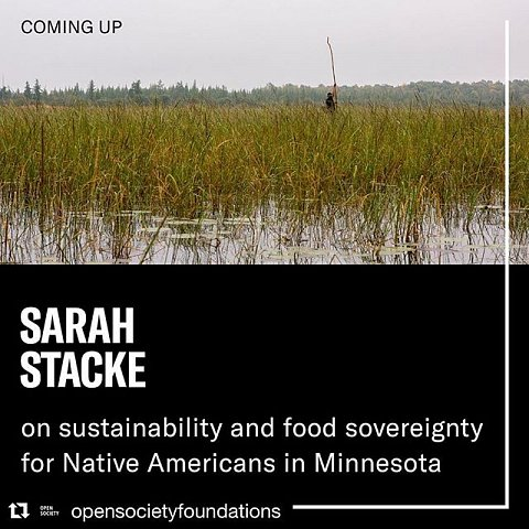 #forcedgeographies #redlake #ojibwe #foodsovereignty